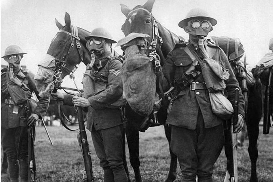 Horses wearing gas masks during WWI British Cavalry training exercise, circa 1917.